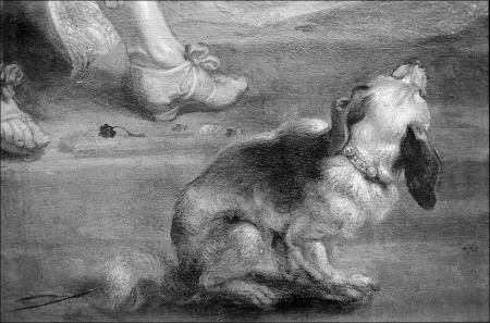 Rubens' Dog