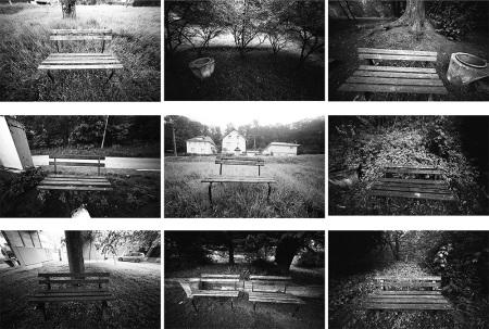 Nine Park Benches