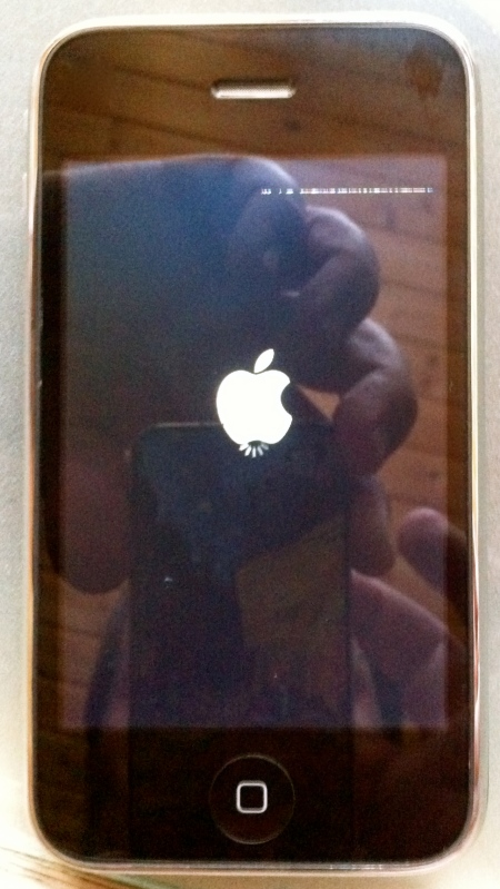 iPhone 3G Hanging in the Boot Process